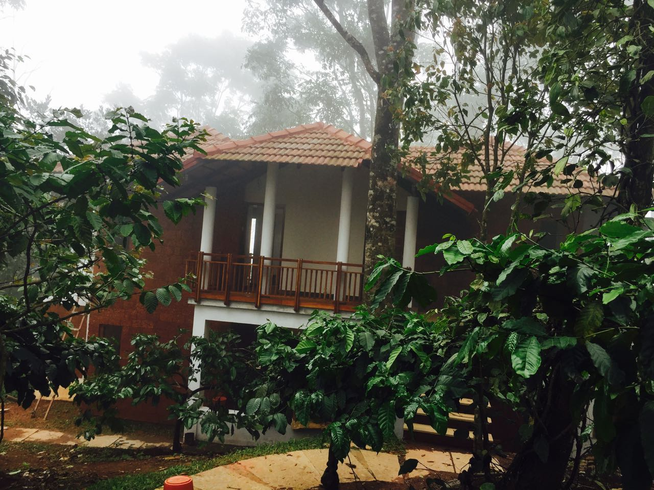 motel in wayanad,motels wayanad,motels in wayanad,motels wayanad,motel in calicut,motels calicut,motels in calicut,motels calicut
